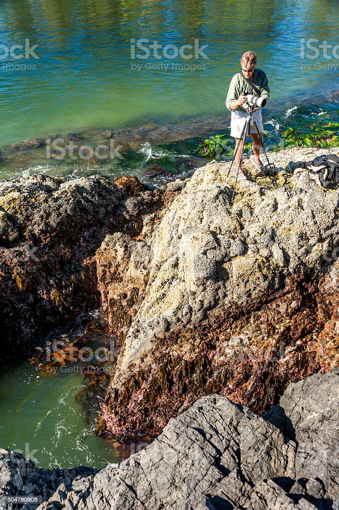 Man standing on high rocks photographs marine life stock photo