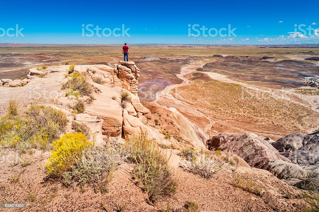Man Standing on Rock at Petrified Forest National Park Arizona stock photo