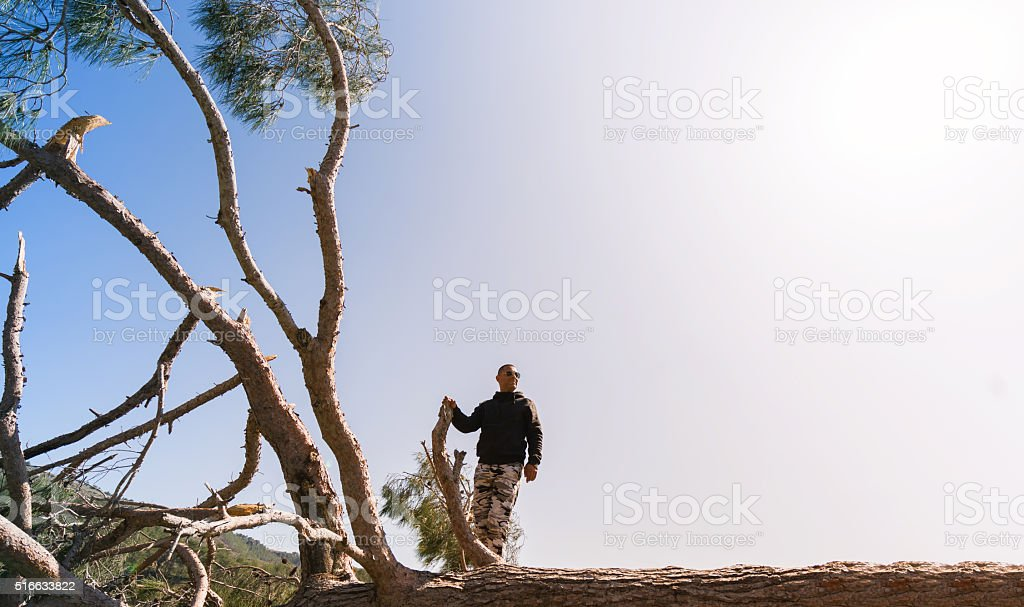 Man standing on tree stock photo