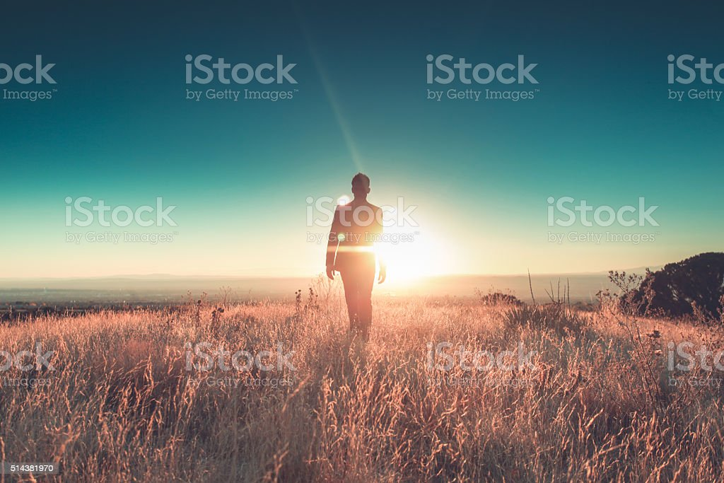 man sun business suit nature landscape royalty-free stock photo