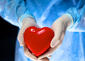 Man surgeon holds a heart in an operating room