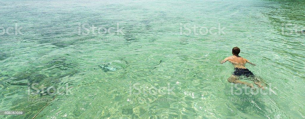 Mann Schwimmen in klaren tropischen Wasser Lizenzfreies stock-foto