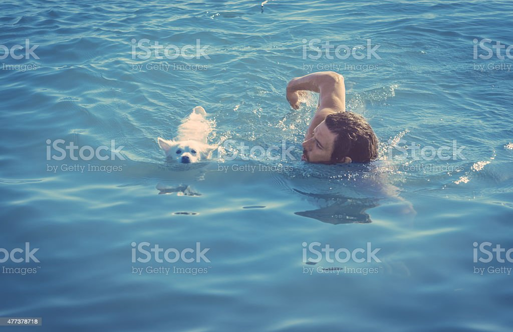 man swimming with dog stock photo