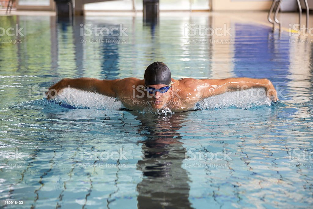Man swims butterfly style in public swimming pool stock photo