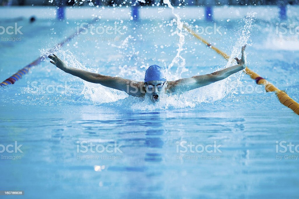 man swims the butterfly stock photo