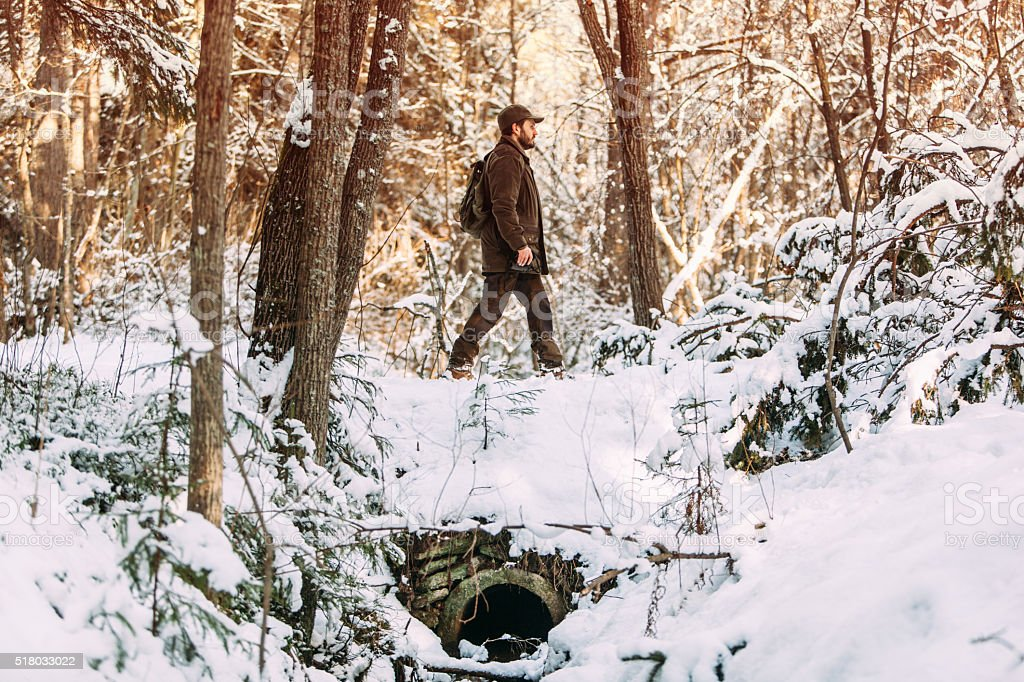 Man Taking A Hike Through The Golden Sunlit Winter Forests stock photo