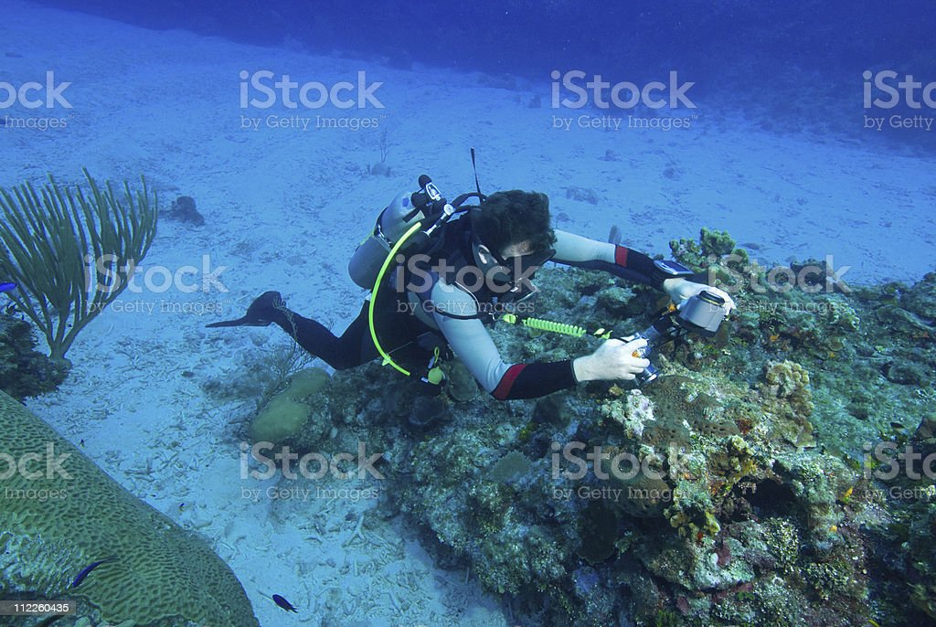 man taking a picture underwater stock photo