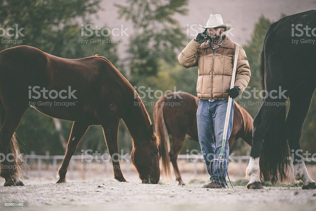 Man talks on cell phone while working in horse pasture royalty-free stock photo