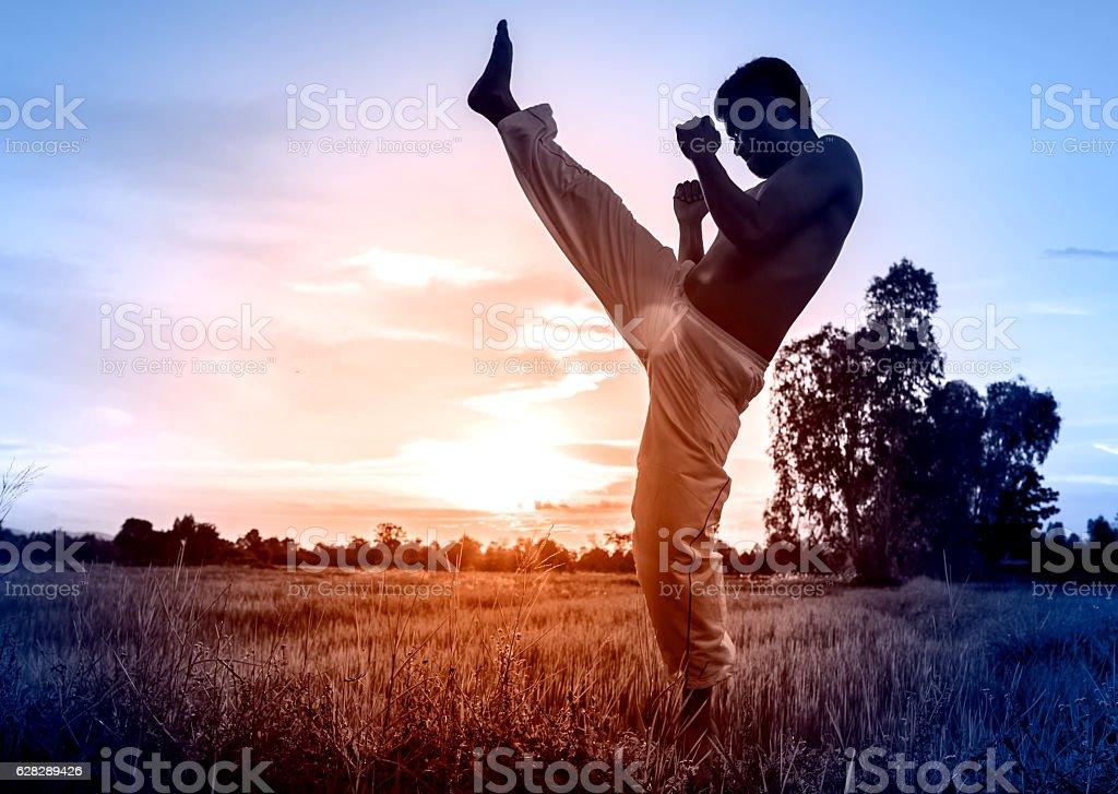 man training karate on sunset. stock photo