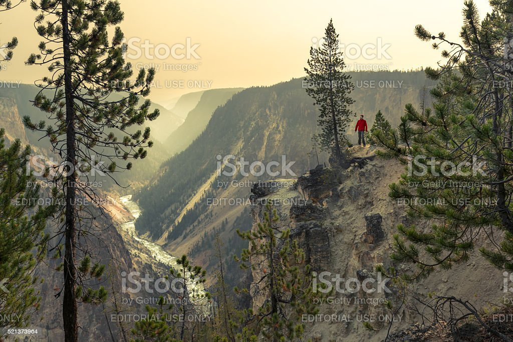 Man trekking by the Grand Canyon of the Yellowstone royalty-free stock photo