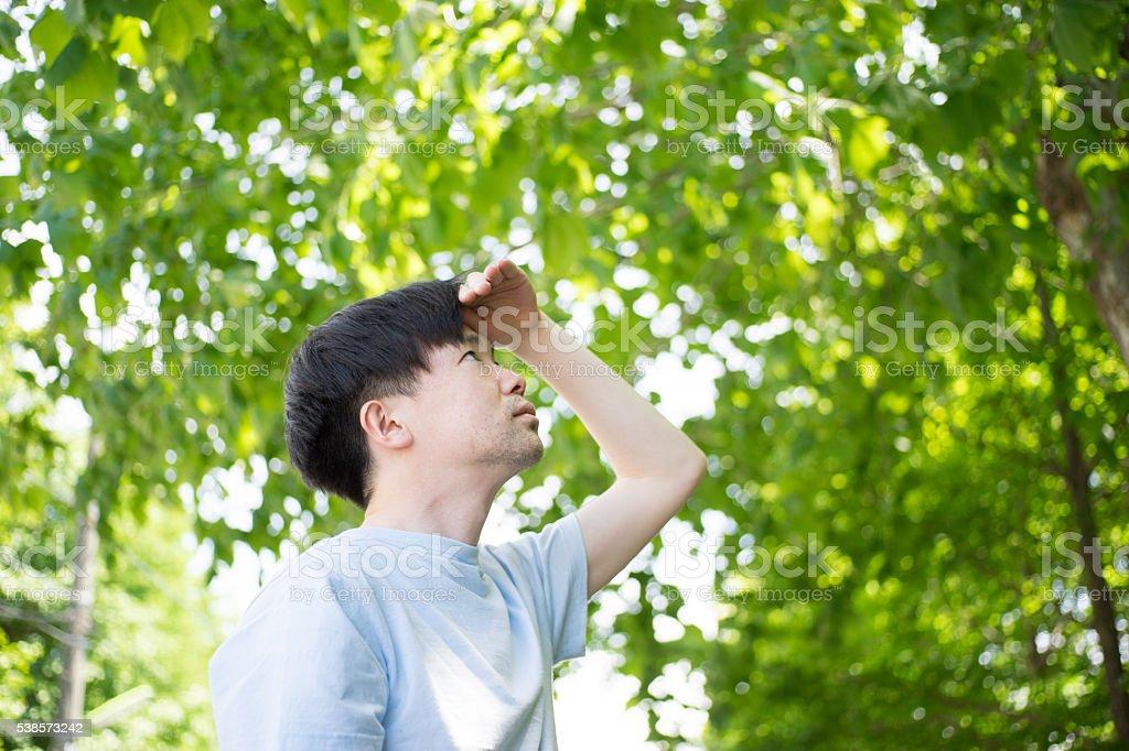 Homme sous la lumière du soleil filtre à travers la végétation photo libre de droits