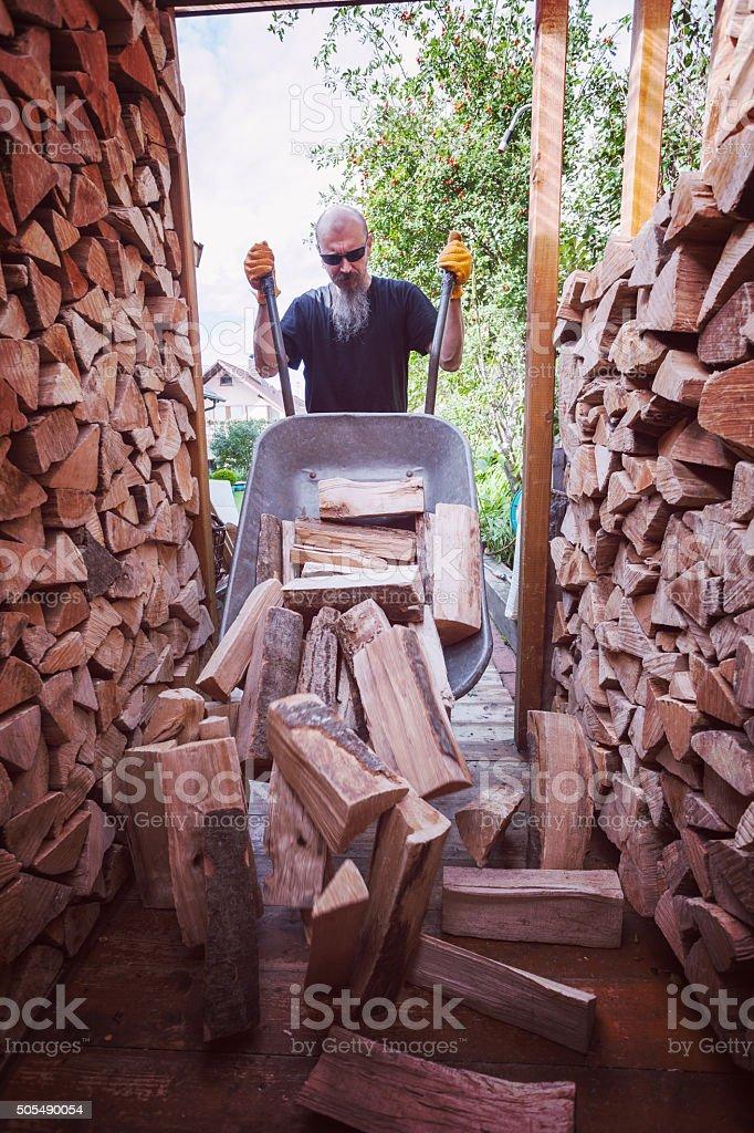 Man unloading wheelbarrow full of firewood stock photo