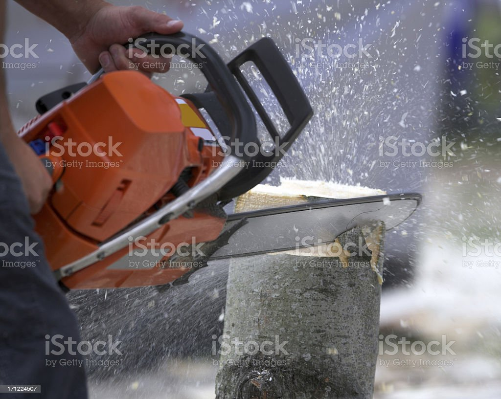 Man using chainsaw to cut down tree stock photo