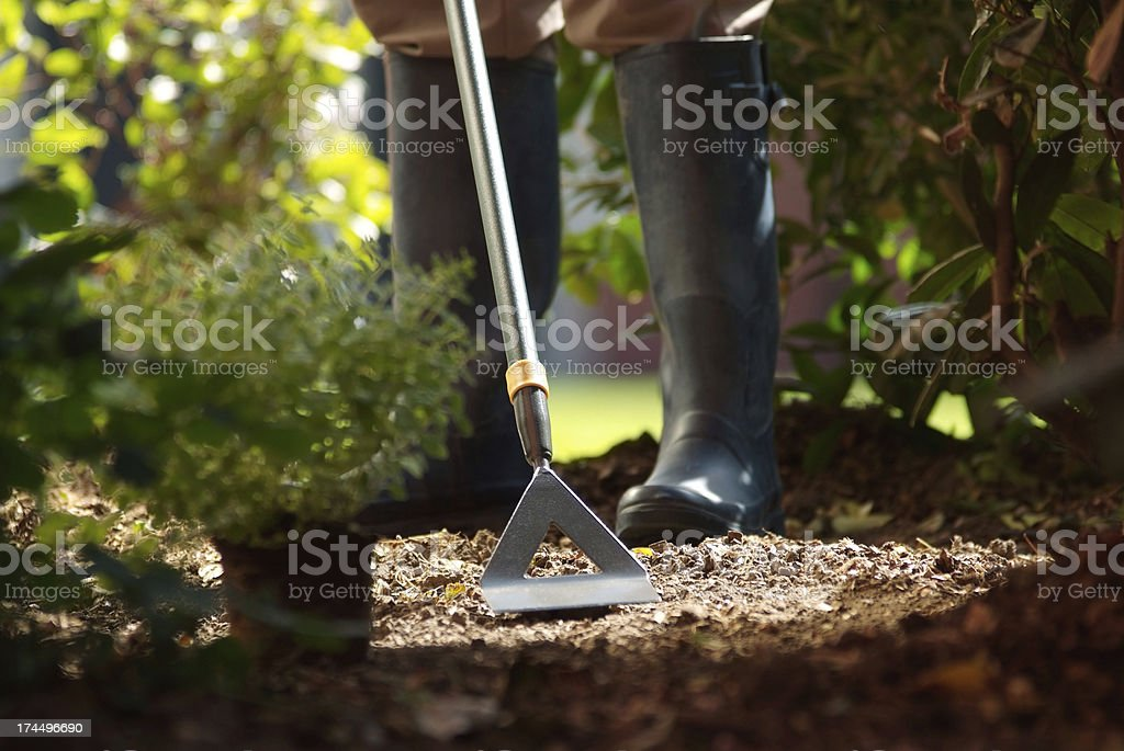 Man using garden Hoe royalty-free stock photo