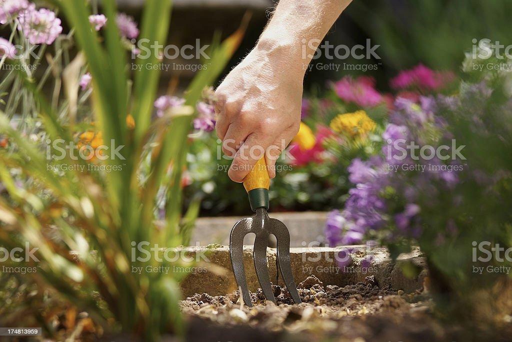 Man using Gardening fork royalty-free stock photo