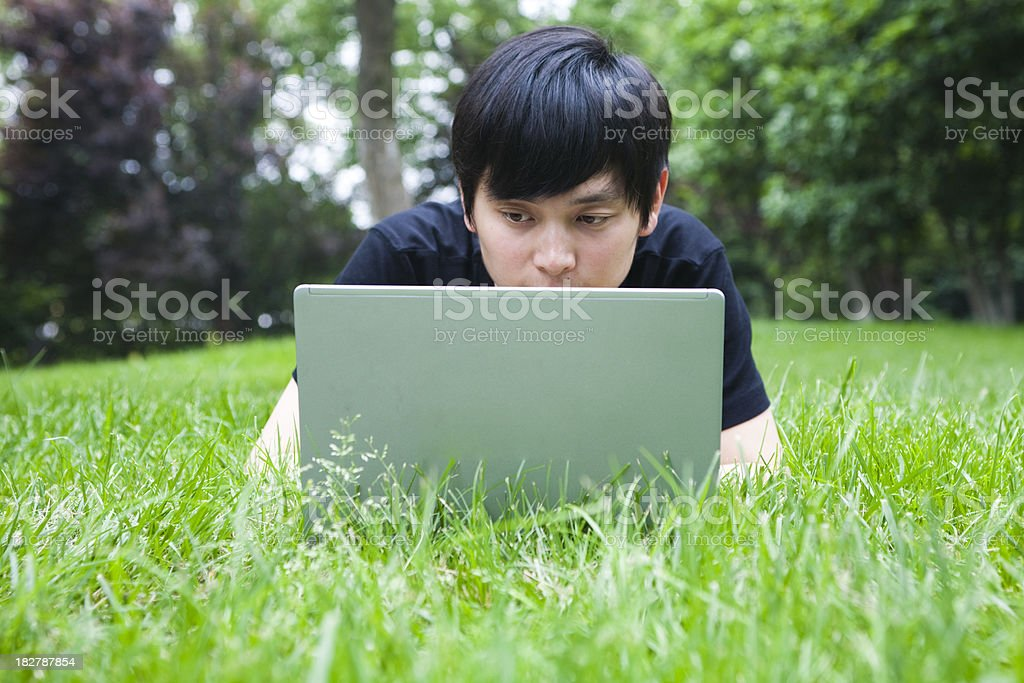 Man using laptop in the park royalty-free stock photo