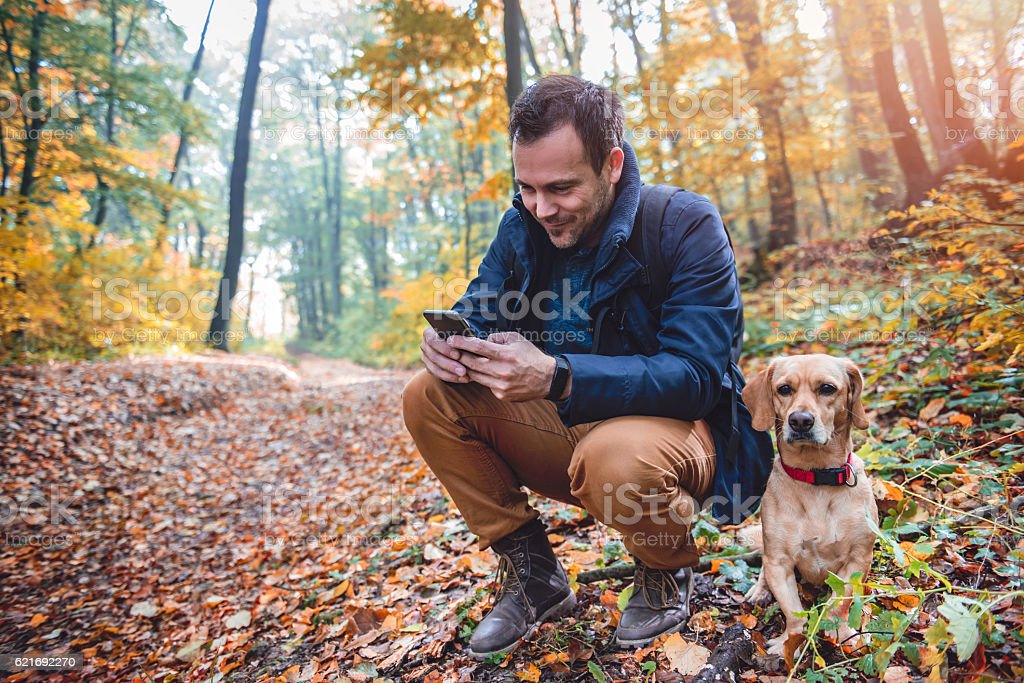 Man using phone in colorful autumn forest stock photo