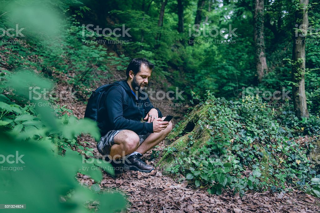 Man using smart phone to navigate in the forest stock photo