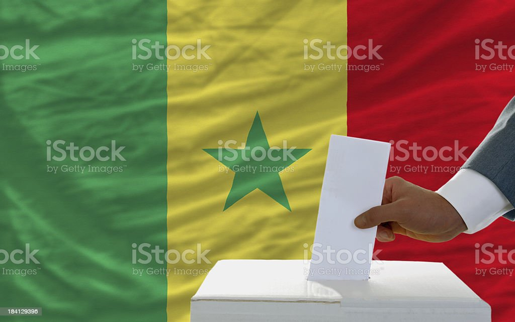 man voting on elections in senegal front of flag royalty-free stock photo