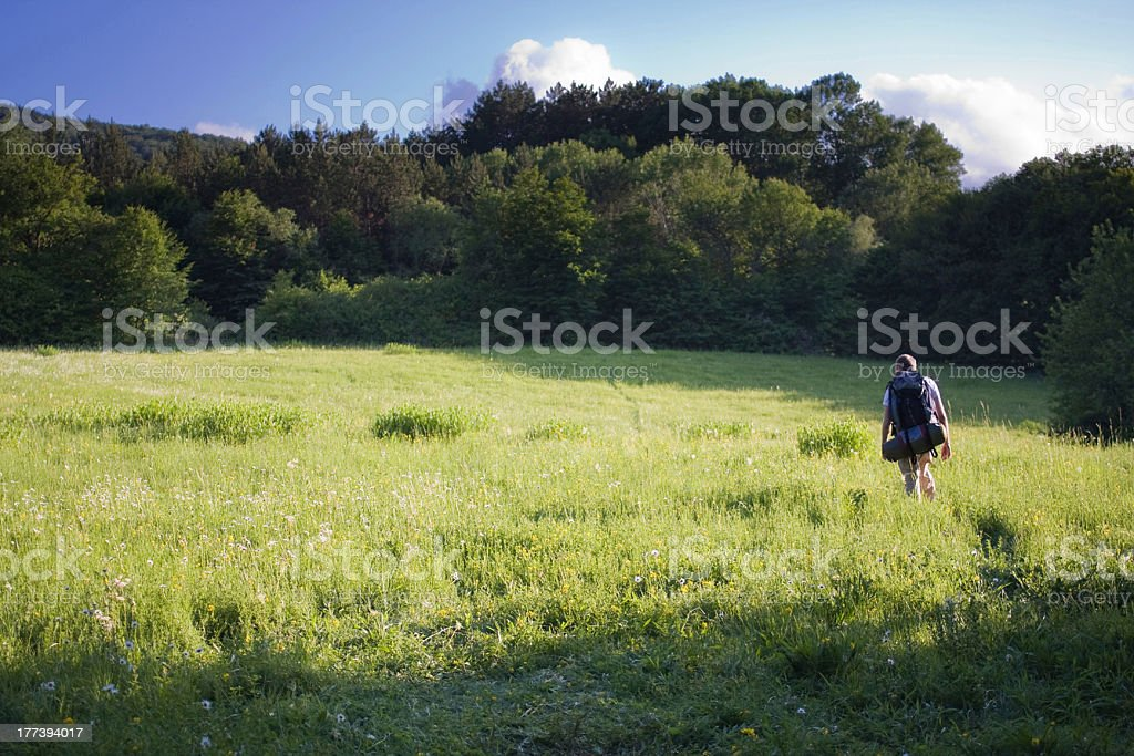 Man walking along the path in forest royalty-free stock photo