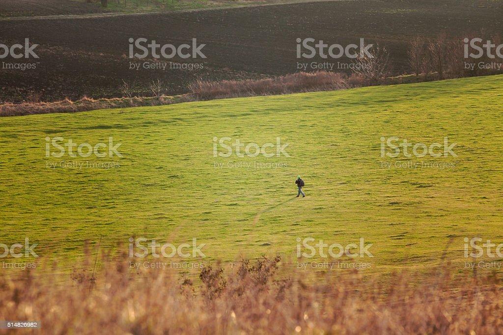 Man walking at green field stock photo