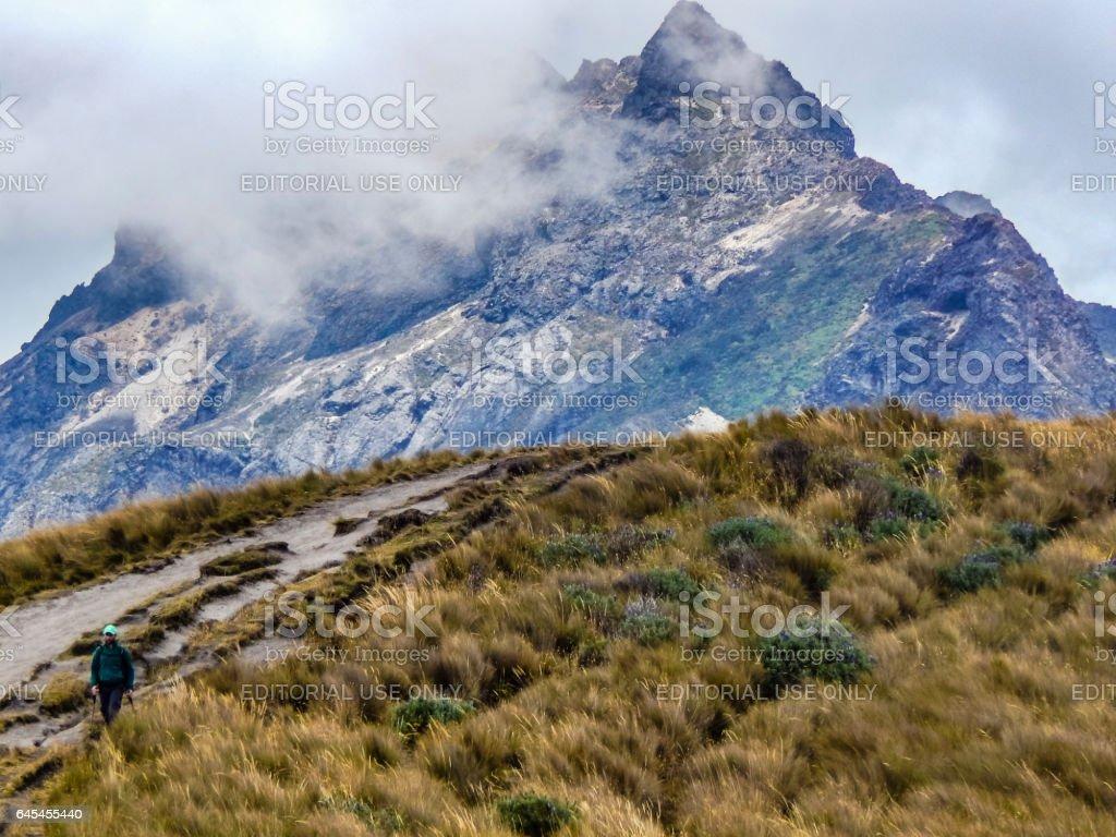 Man Walking at Road through Andes Mountains stock photo