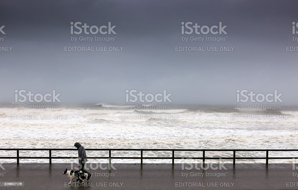 Man Walking Dog at Sea Front on Stormy Day Aberdeen stock photo