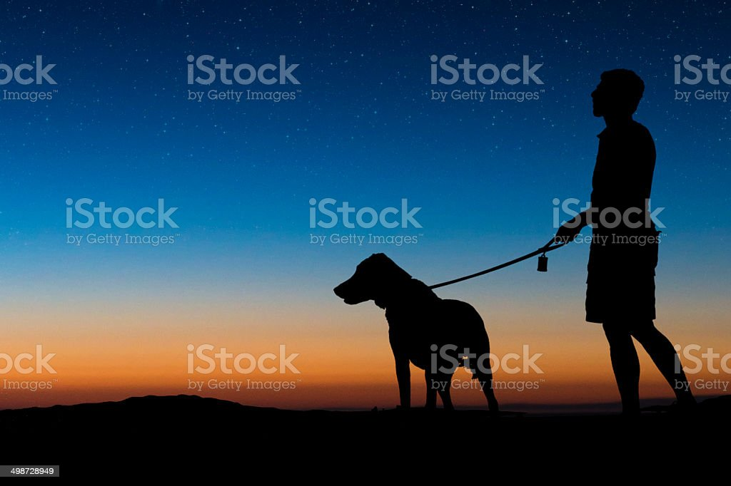 Man walking dog on a clear night stock photo