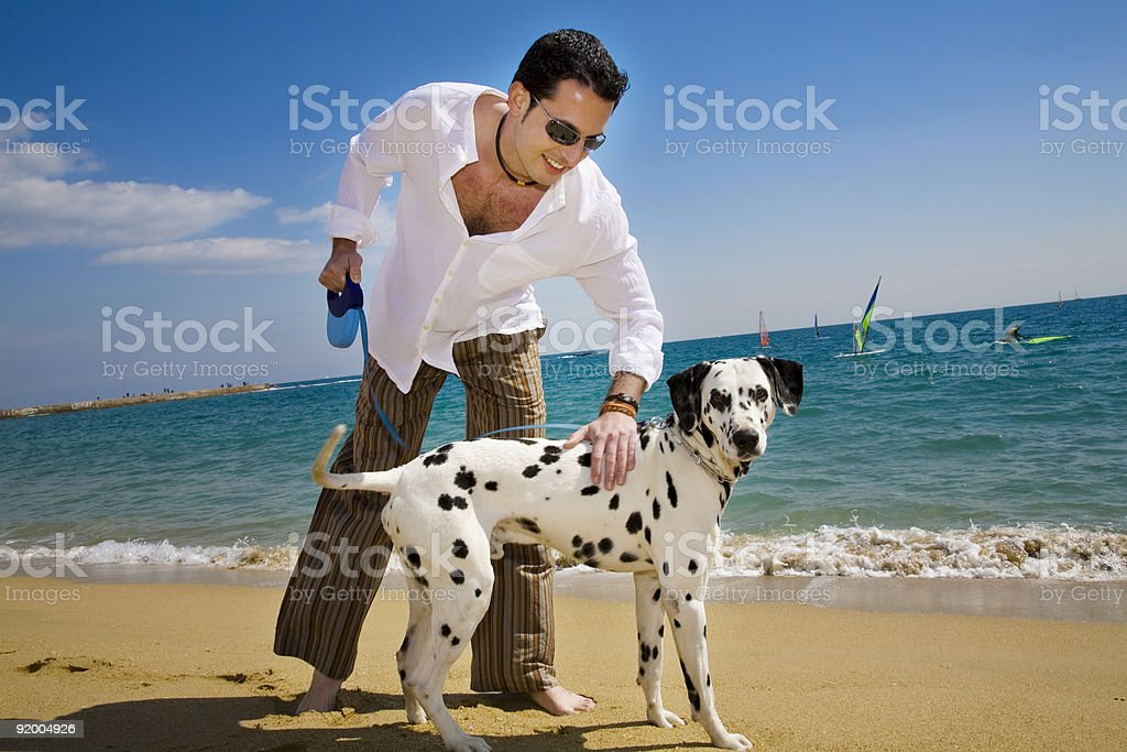 Man walking his Dalmatian at the beach and topping to pet it stock photo