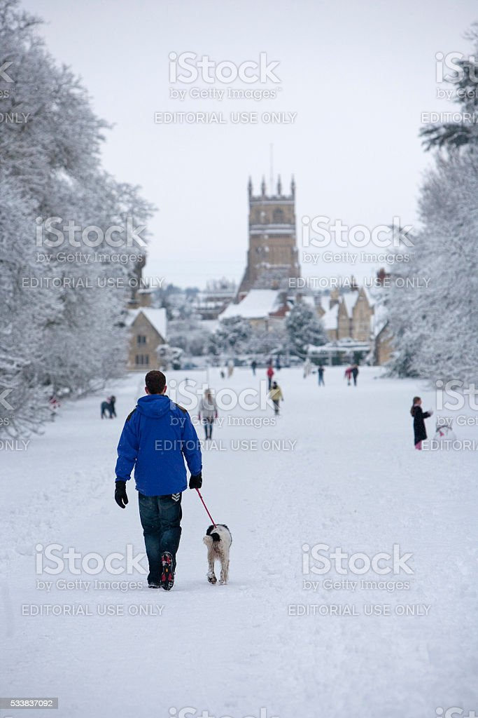 Man walking his dog on a snowy winters day stock photo