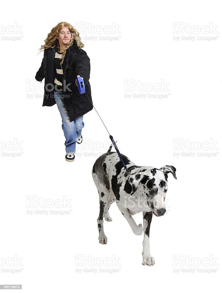Man walking his dog (Great Dane 4 years) royalty-free stock photo