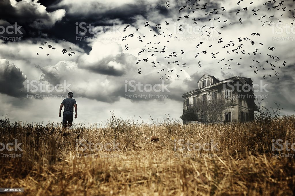 Man walking in a field stock photo