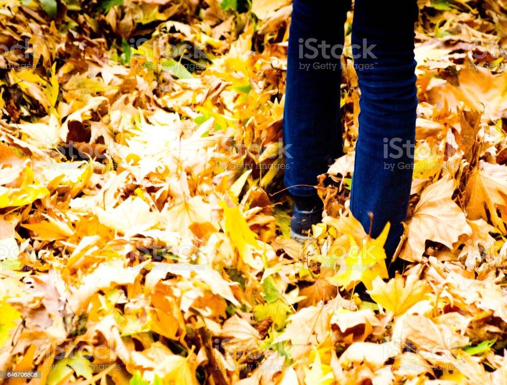 Man walking in fallen leaves stock photo