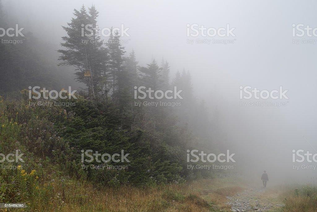 Man walking in the fog stock photo