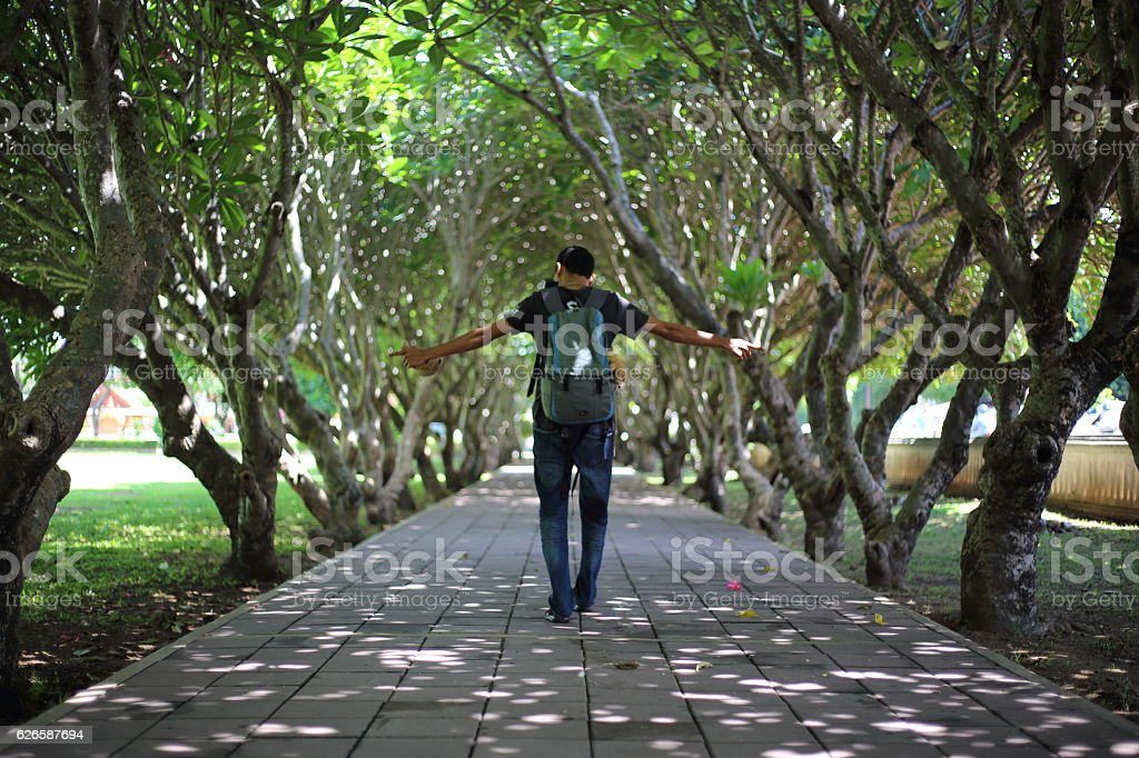 Man walking in the passage of Plumeria tunnel stock photo