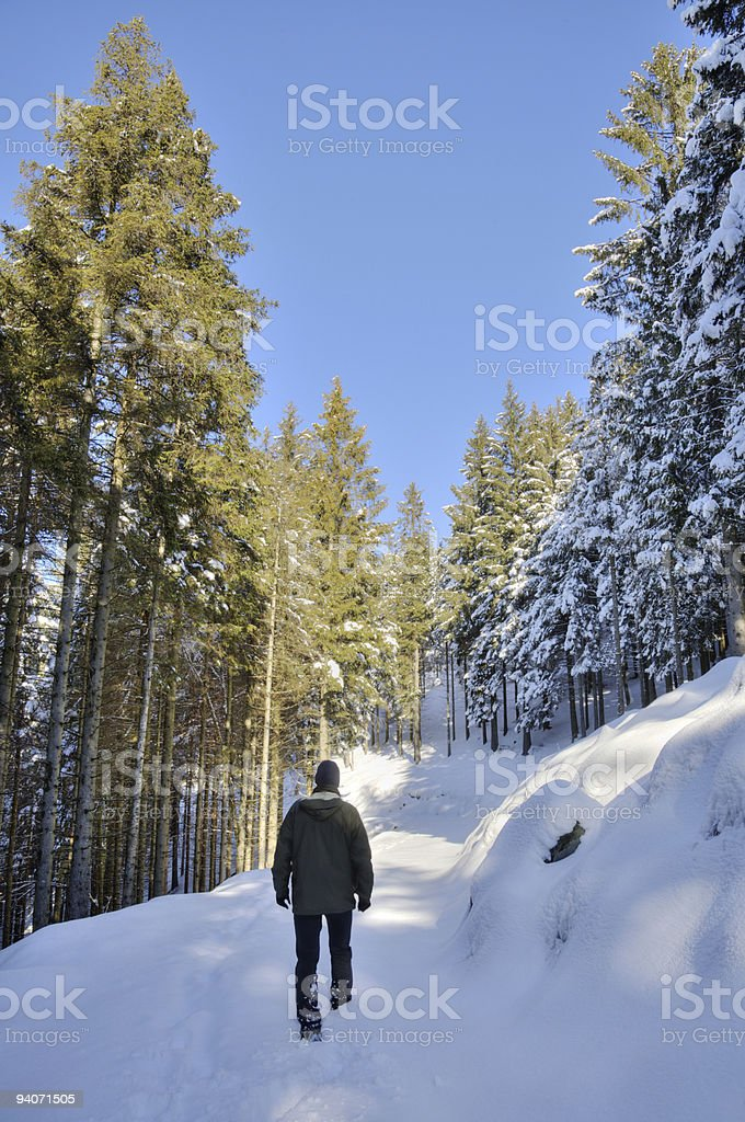 Man walking in the snow royalty-free stock photo