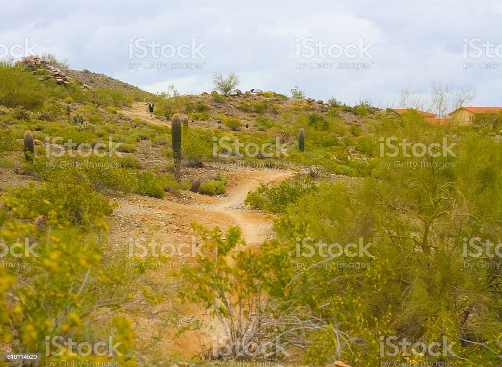 Man Walking on Desert Road - Stock Image stock photo