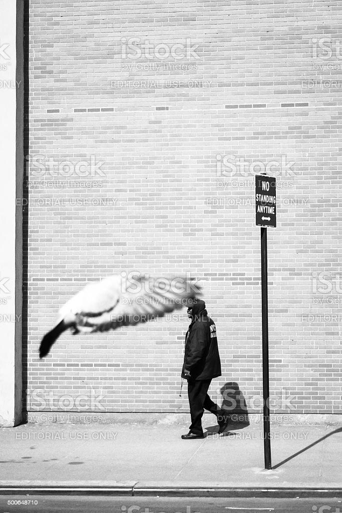 Man walking on sidewalk bw stock photo
