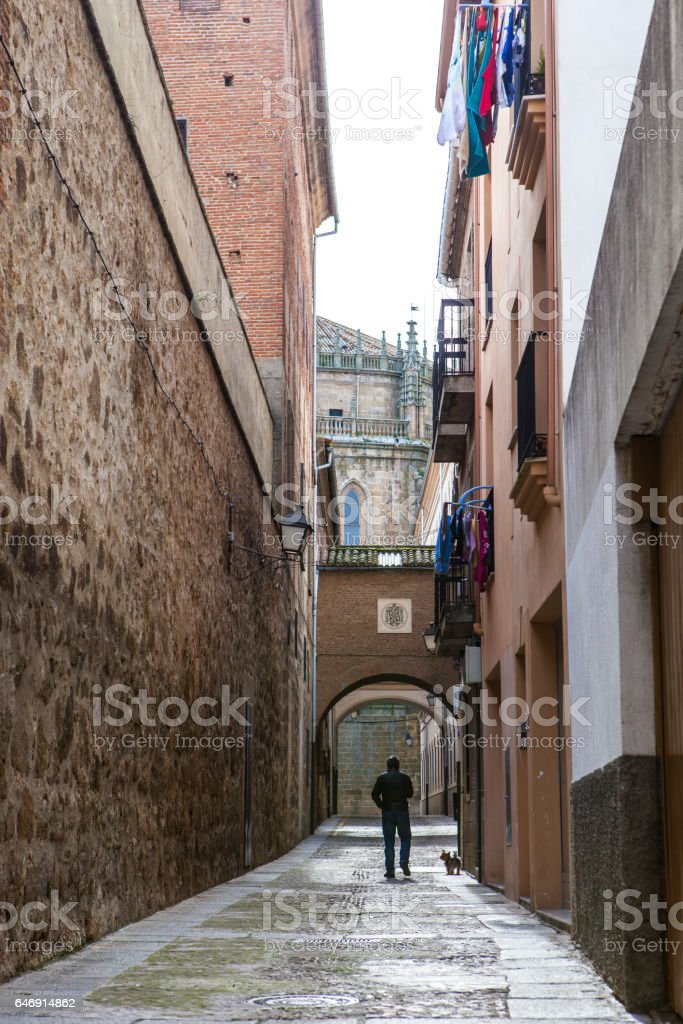 Man walking the dog along Encarnacion Street, Plasencia, Spain stock photo