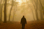 Man walking through a misty forest