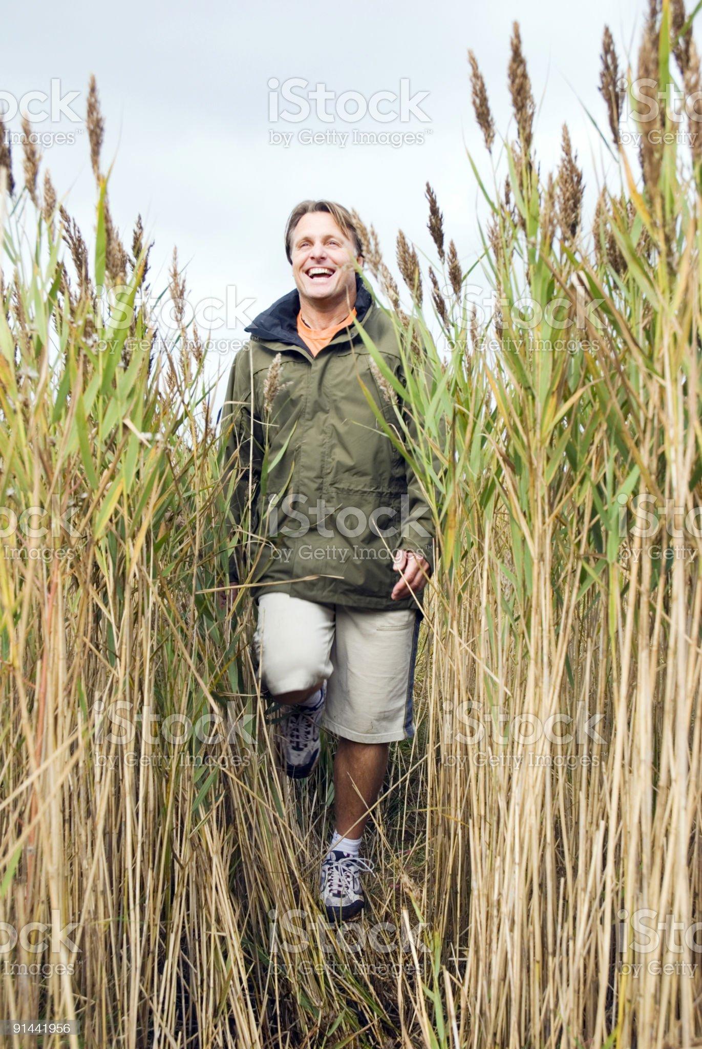 Man walking through reeds. royalty-free stock photo