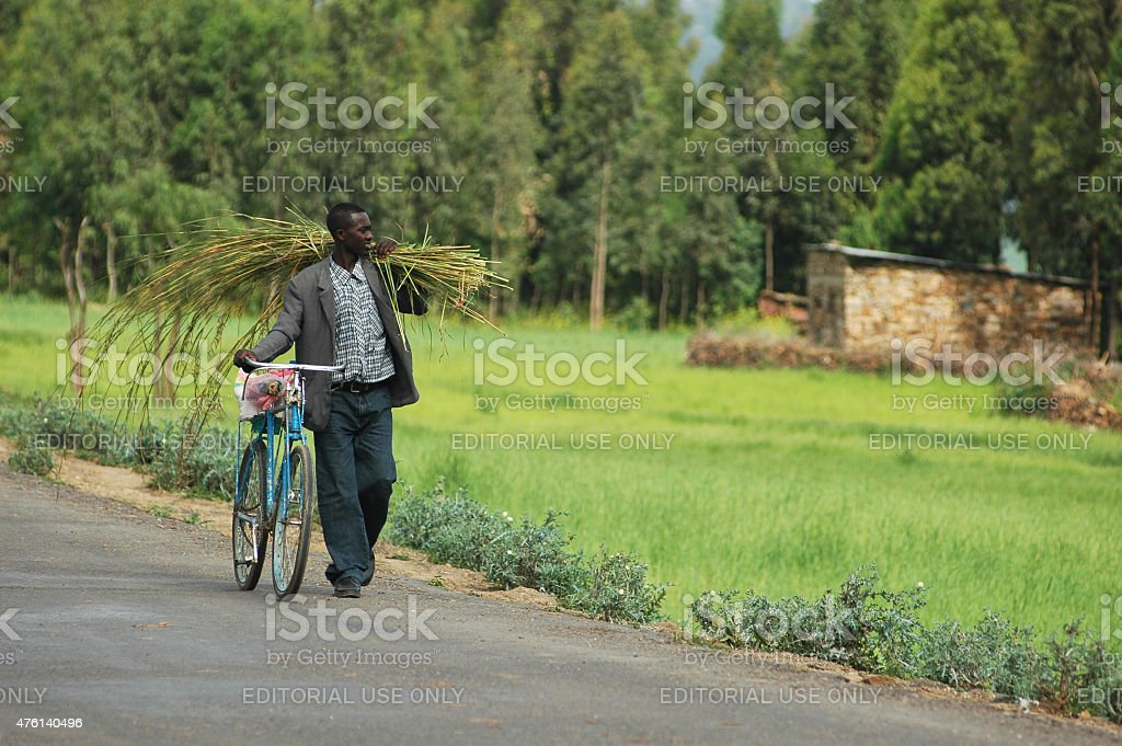Man Walking with Bicycle. Country Road. Ethiopia, Africa. stock photo