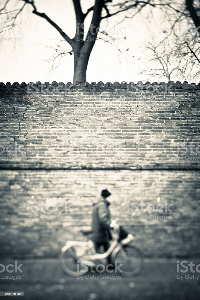 Man Walking with Bicycle royalty-free stock photo