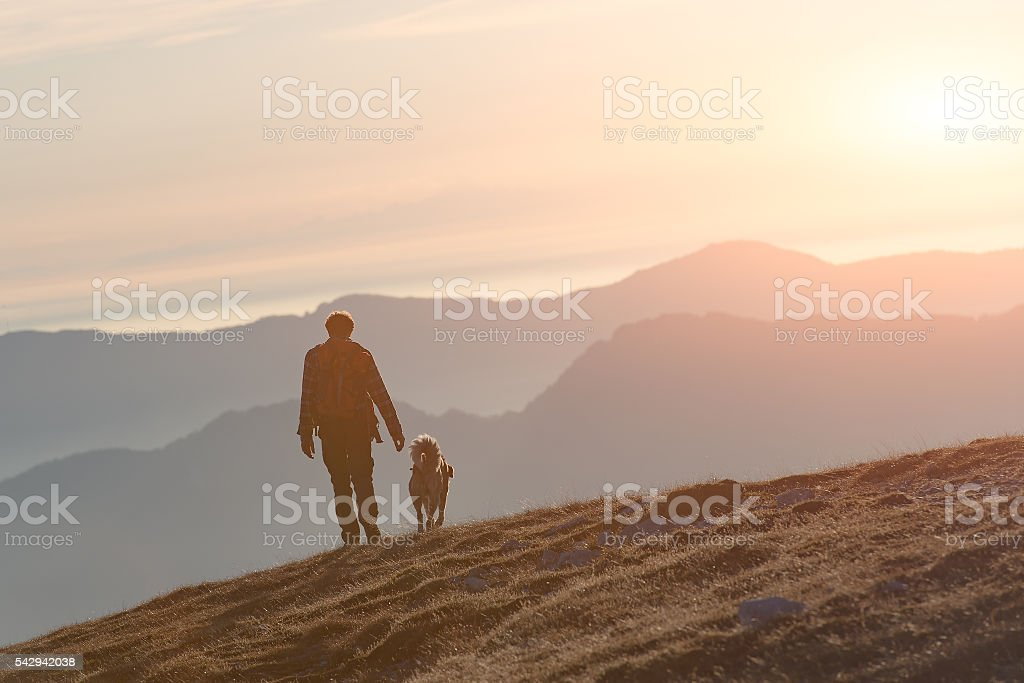 Man walking with his dog in the mountains stock photo