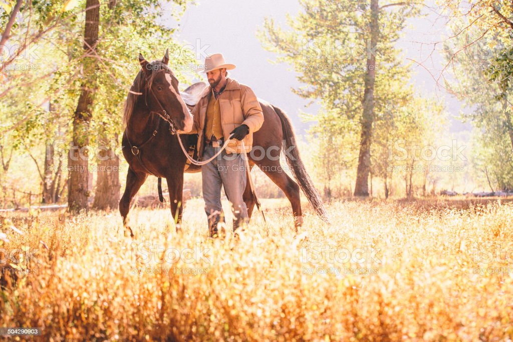 Man walks and guides horse through beautiful sunlit field royalty-free stock photo