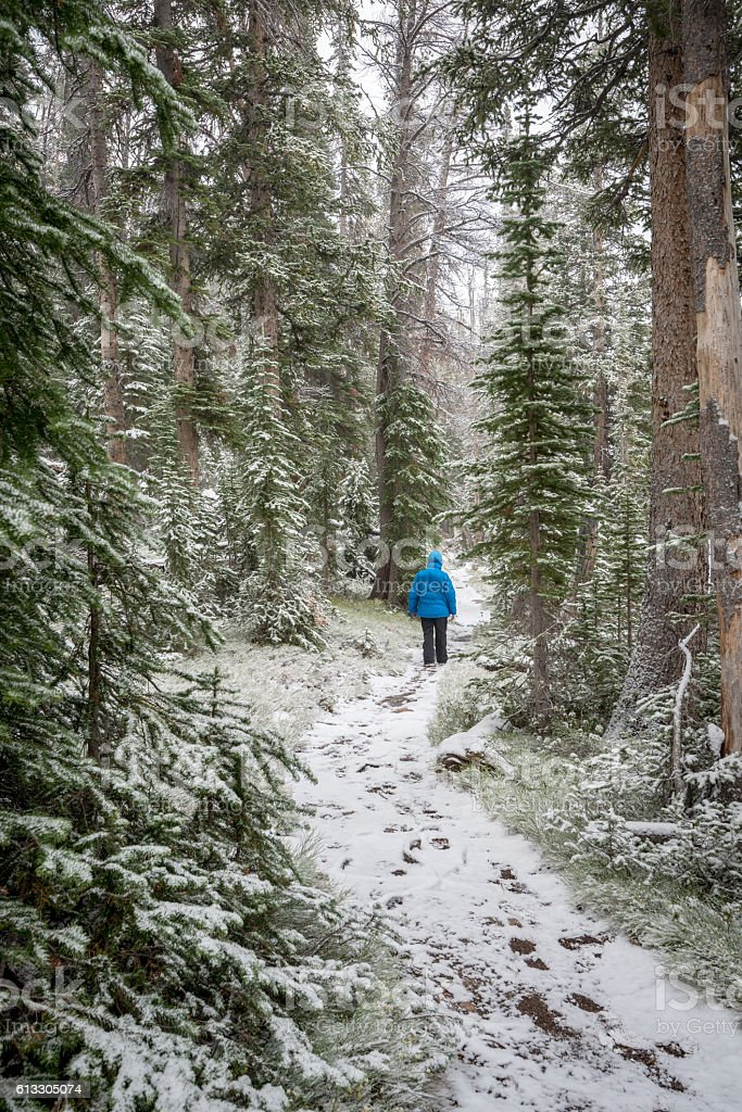 Man walks in a snow covered trail in a forest stock photo