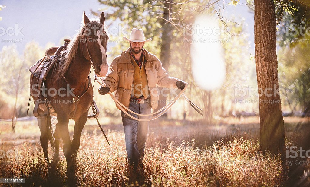 Man walks through field surrounded by trees while guiding horse stock photo