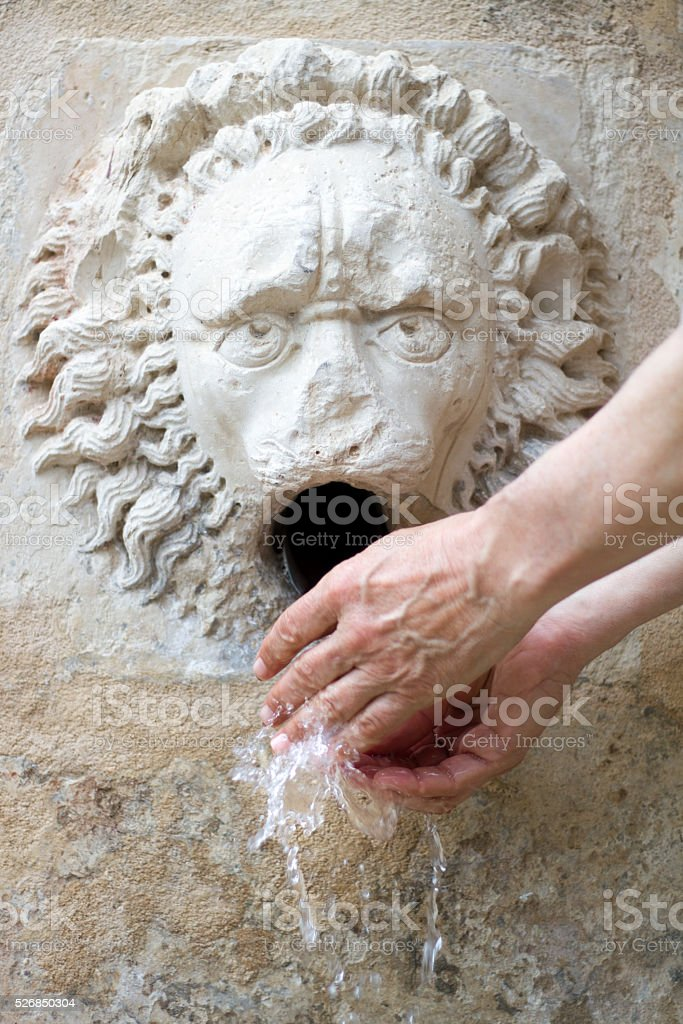 Man Washing Hands at Antique Stone Lion Fountain, Sicily stock photo