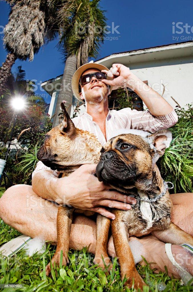 Man washing his dogs stock photo