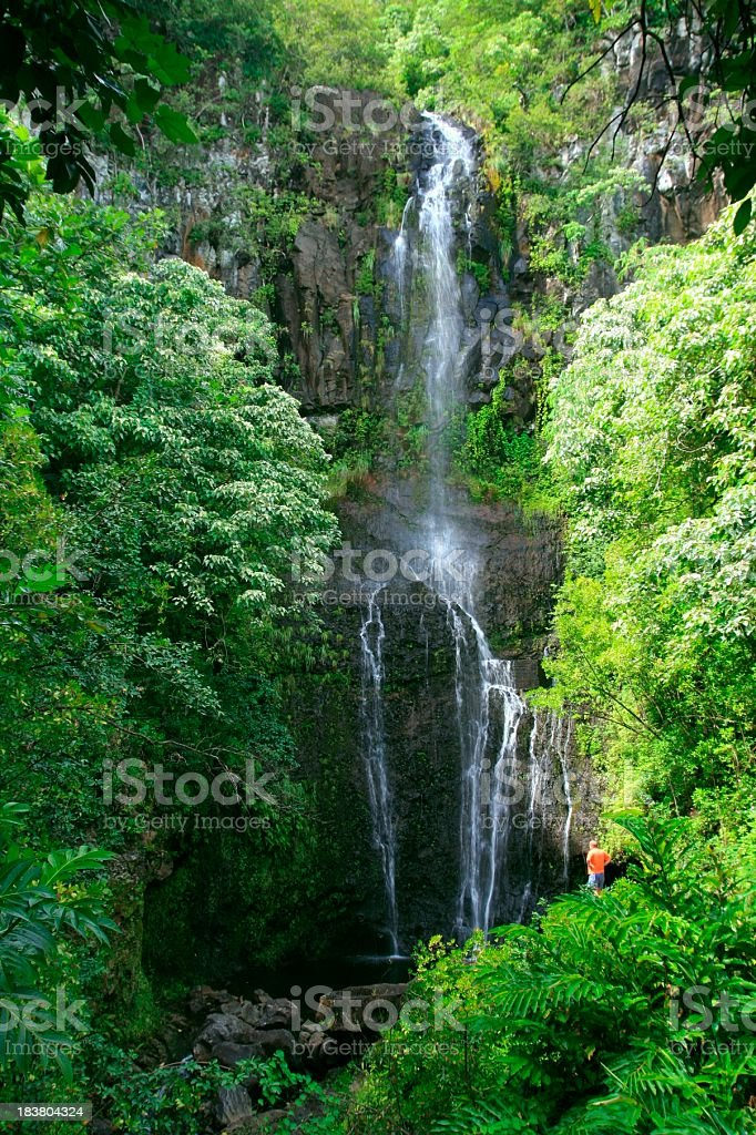 Man watches Beautiful Hana Maui Hawaii Waterfall stock photo